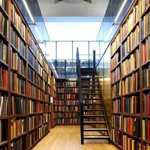 Библиотеки Большеречья